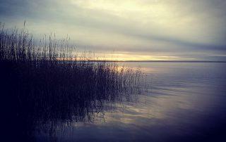 Sonnenaufgang am Darss